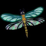 Dragonfly Pajamas & Loungewear