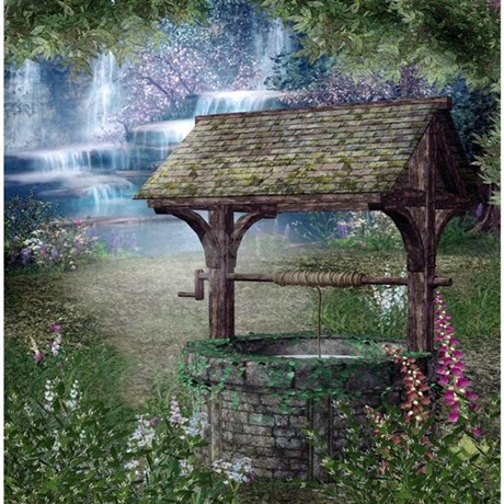 real wishing well