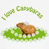 Capybara Underwear