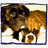 Animals boxer dogs Underwear & Panties