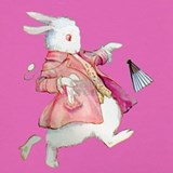 Alice wonderland rabbit Underwear & Panties