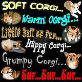 Corgi Pajamas & Loungewear
