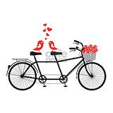 Bicycle Pajamas & Loungewear