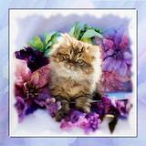 Golden persian cat Sweatshirts & Hoodies