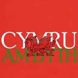 Welsh rugby T-shirts