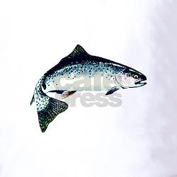Fish Logo Polos Fish Logo Polo Shirts Fish Logo Golf