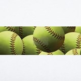 Fastpitch softball Wall Decals
