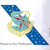 Strategic air command veteran Polos