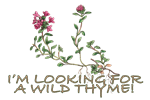Looking For Wild Thyme