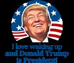 Waking Up Donald