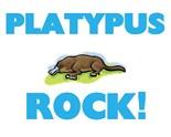 Duck Billed Platypuses