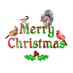 <b>MERRY CHRISTMAS BIRDS AND SQUIRREL</b>