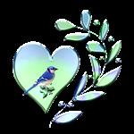 <b>BLUE JAY LOVER</b>