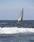 California Sailboat into the Wind