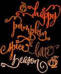 Happy Pumpkin Spice Latte Season