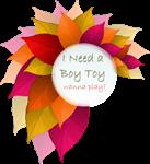I Need A Boy Toy