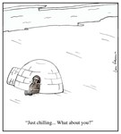 Just Chilling at an Igloo