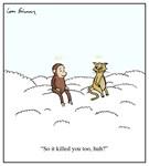 Curiosity Killed The Cat Cartoon