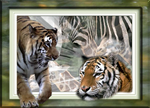 Wildlife Lovers Print Duvets and Blankets
