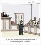Charismatic Lawyer