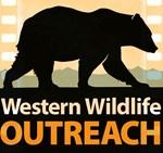 Retro Grizzly Bear Logo