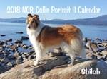 Collie Rescue Wall Calendars