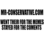 Went Their for the Memes - Stayed for the Coments