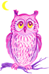 pink and purple owl