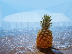 Pineapple On Beach Low Poly