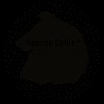 Got Rescue Collie?
