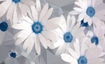 White Daisies Low Poly