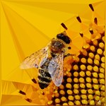 Honeybee Sunflower Low Poly