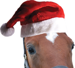 Christmas Santa Claus Horse