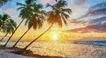 Tropical Sunset Palm Trees Poly
