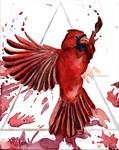 Air Cardinal