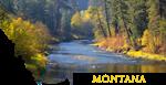 Montana- Thompson River