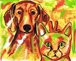 Dachshund & Cat