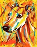 Greyhound/Whippet