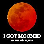 I Got Mooned Jan 2018