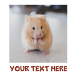 Hamster Personalized
