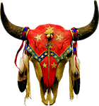 Copy of Star Buffalo Skull