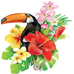 Tropical Floral Toucan Hibiscus