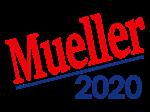 Mueller 2020