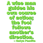 A Wise Man Guides