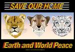 Lioness, Cheetah, Snow Leopard