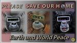 Gorilla, Orangutan, Chimpanzee