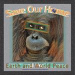 SOH: Orangutan