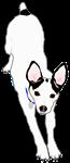 Meiklo dog stretch