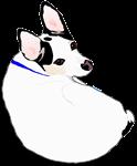 Meiklo dog curled up