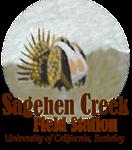 Sagehen Watercolor Logowear